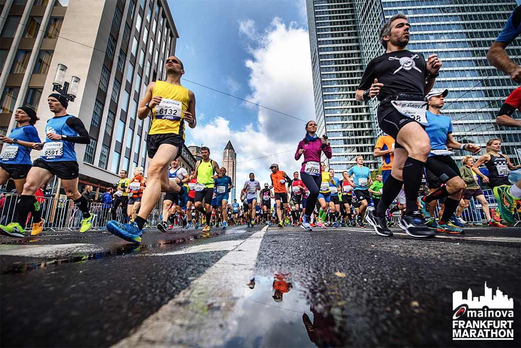 Frankfurdi maraton