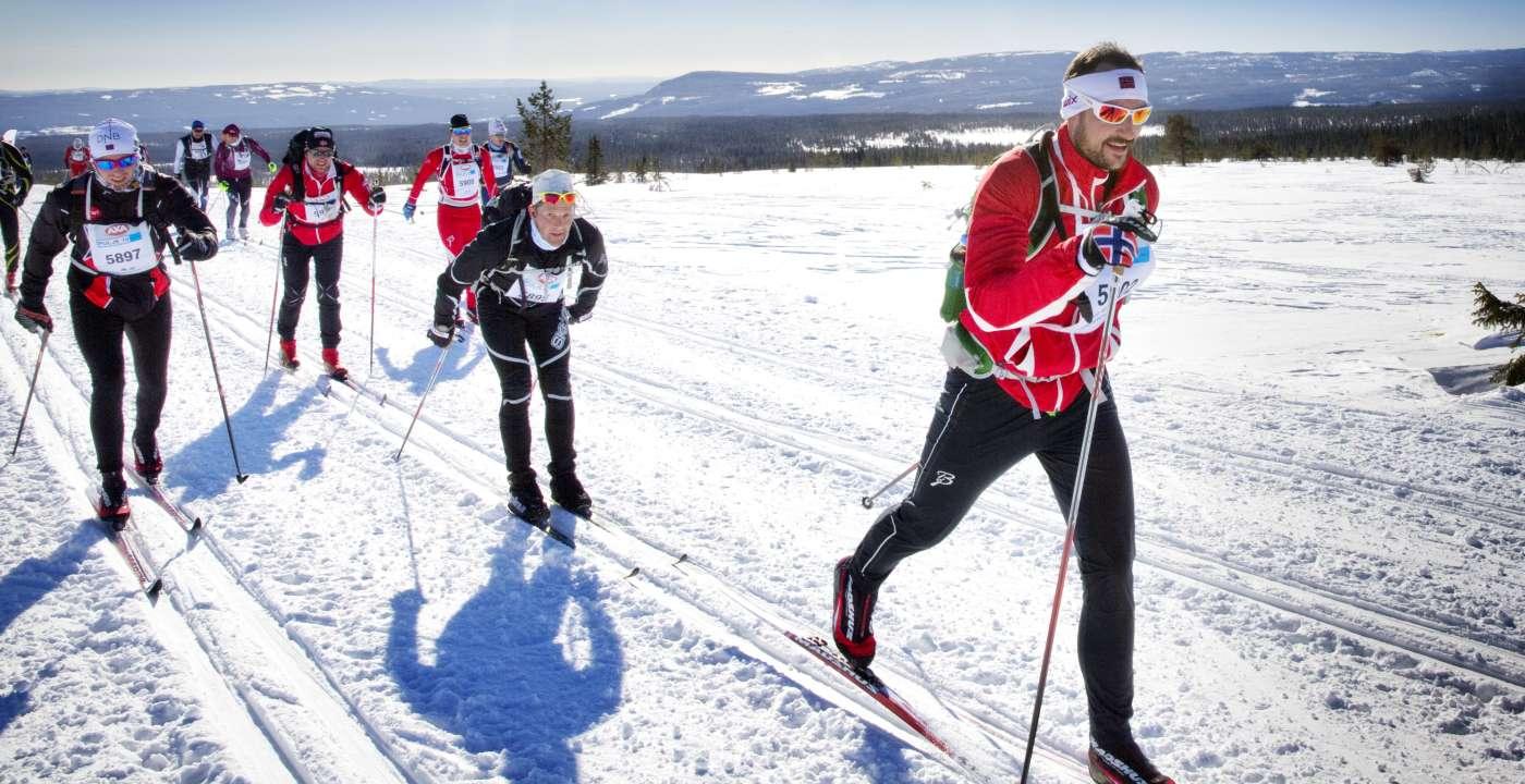 birken-ski-2015-8