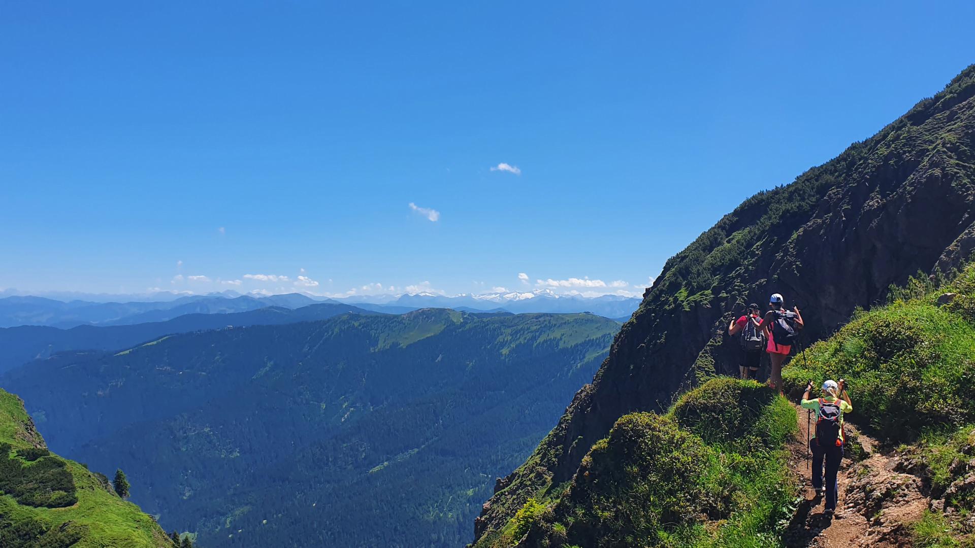 Alpid, Saalbach